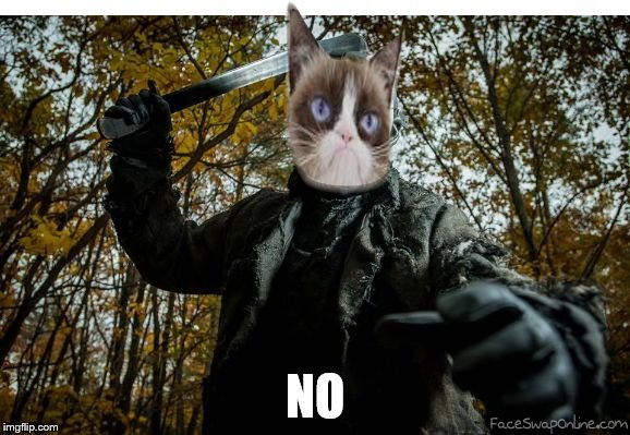 grumpy cat jason | NO | image tagged in grumpy cat jason | made w/ Imgflip meme maker