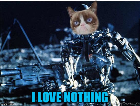 grump cat terminator | I LOVE NOTHING | image tagged in grump cat terminator | made w/ Imgflip meme maker