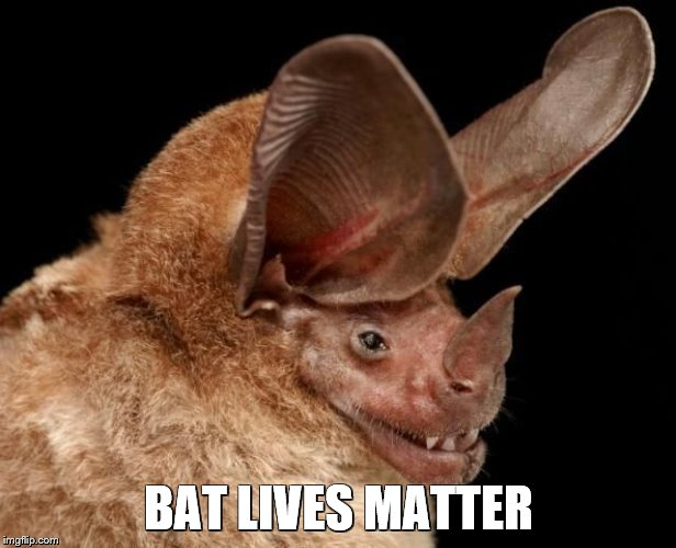 BAT LIVES MATTER | made w/ Imgflip meme maker