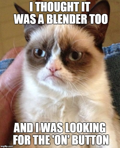 Grumpy Cat Meme | I THOUGHT IT WAS A BLENDER TOO AND I WAS LOOKING FOR THE 'ON' BUTTON | image tagged in memes,grumpy cat | made w/ Imgflip meme maker