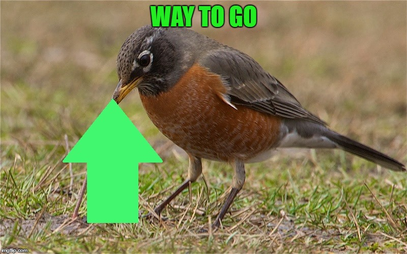WAY TO GO | made w/ Imgflip meme maker