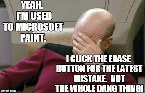 Captain Picard Facepalm Meme | YEAH.  I'M USED TO MICROSOFT PAINT. I CLICK THE ERASE BUTTON FOR THE LATEST MISTAKE.  NOT THE WHOLE DANG THING! | image tagged in memes,captain picard facepalm | made w/ Imgflip meme maker