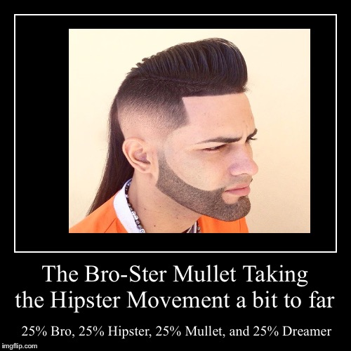 Taking the hipster thing a bit far... Far back to the 80's | The Bro-Ster MulletTaking the Hipster Movement a bit to far | 25% Bro, 25% Hipster, 25% Mullet, and 25% Dreamer | image tagged in funny,demotivationals | made w/ Imgflip demotivational maker
