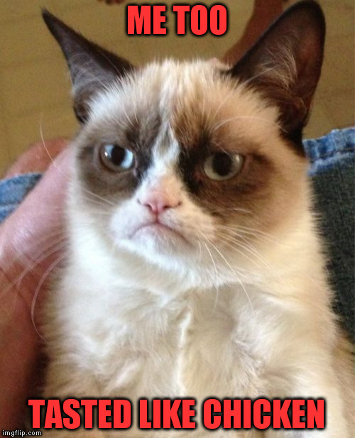 Grumpy Cat Meme | ME TOO TASTED LIKE CHICKEN | image tagged in memes,grumpy cat | made w/ Imgflip meme maker