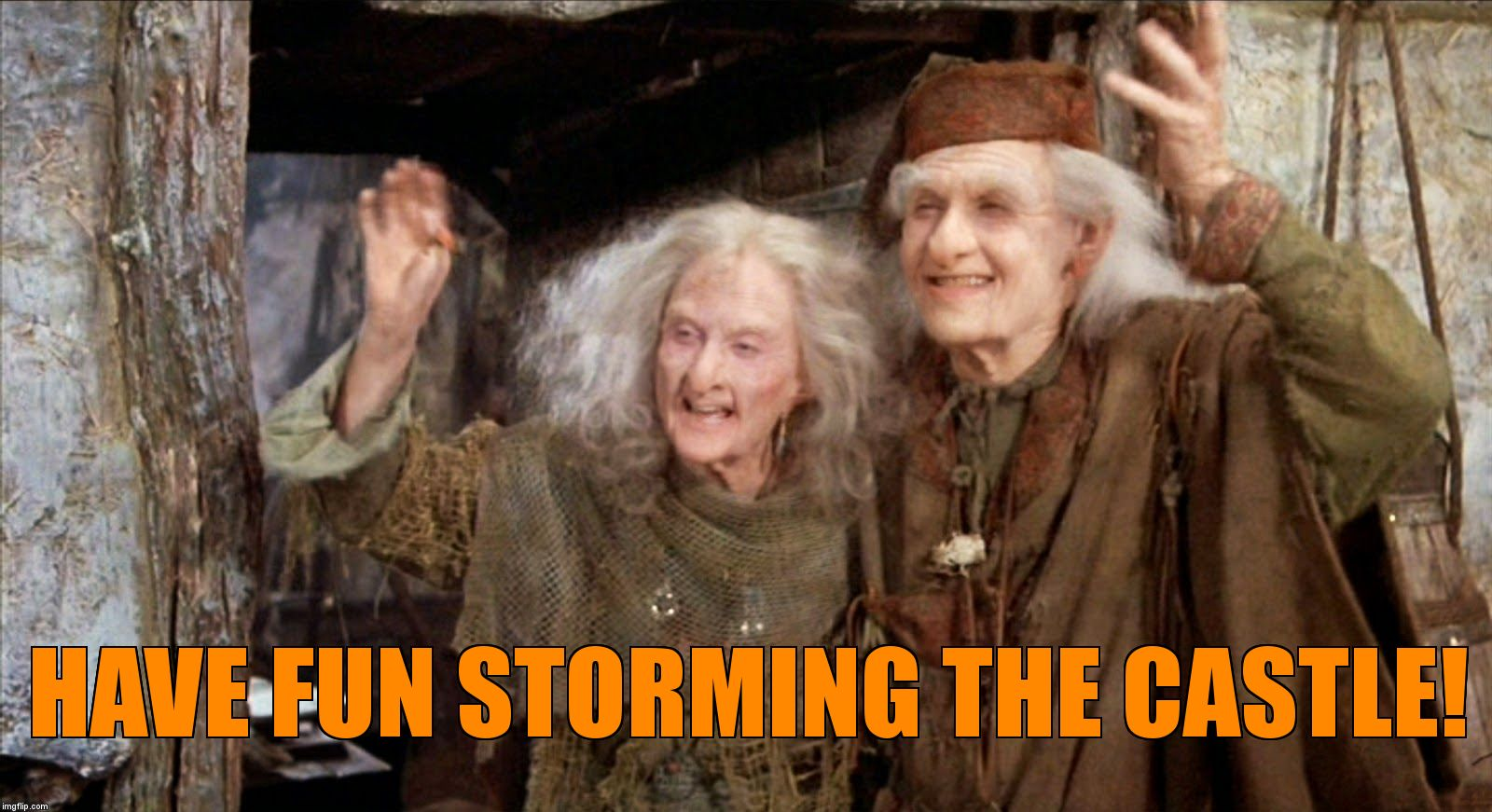 Buttercup |  HAVE FUN STORMING THE CASTLE! | image tagged in buttercup | made w/ Imgflip meme maker