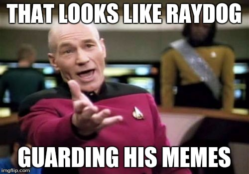 Picard Wtf Meme | THAT LOOKS LIKE RAYDOG GUARDING HIS MEMES | image tagged in memes,picard wtf | made w/ Imgflip meme maker