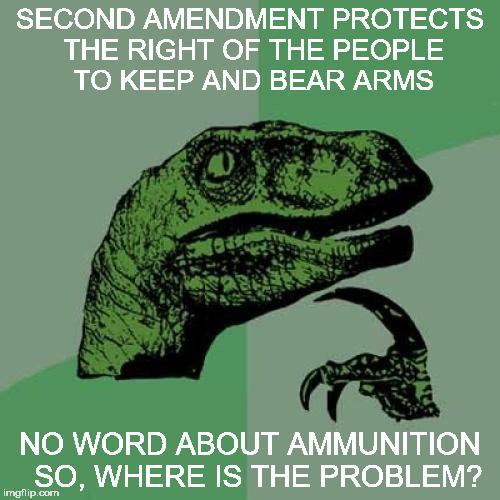 1b63qz philosoraptor meme imgflip,The Right To Bear Arms Meme