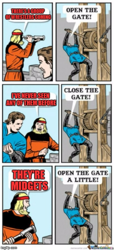 Open the gate a little | THERE'S A GROUP OF WRESTLERS COMING THEY'RE MIDGETS I'VE NEVER SEEN ANY OF THEM BEFORE | image tagged in open the gate a little | made w/ Imgflip meme maker