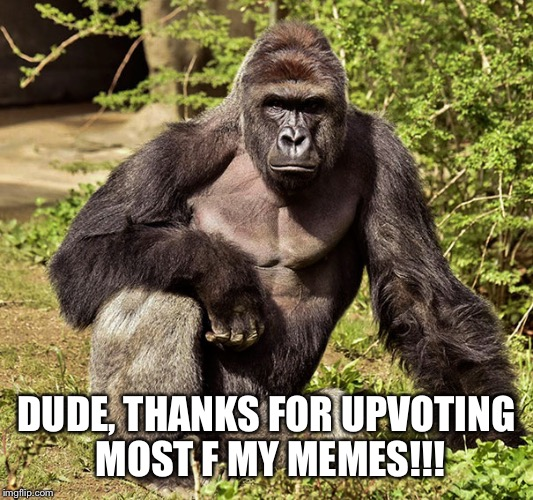 DUDE, THANKS FOR UPVOTING MOST F MY MEMES!!! | made w/ Imgflip meme maker