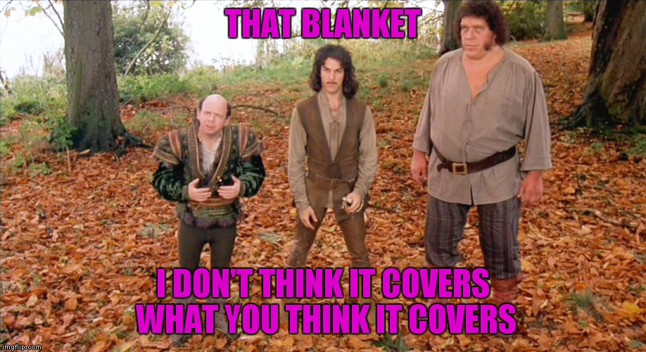 THAT BLANKET I DON'T THINK IT COVERS WHAT YOU THINK IT COVERS | made w/ Imgflip meme maker