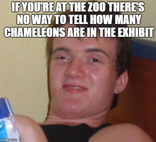10 Guy Meme | IF YOU'RE AT THE ZOO THERE'S NO WAY TO TELL HOW MANY CHAMELEONS ARE IN THE EXHIBIT | image tagged in memes,10 guy | made w/ Imgflip meme maker