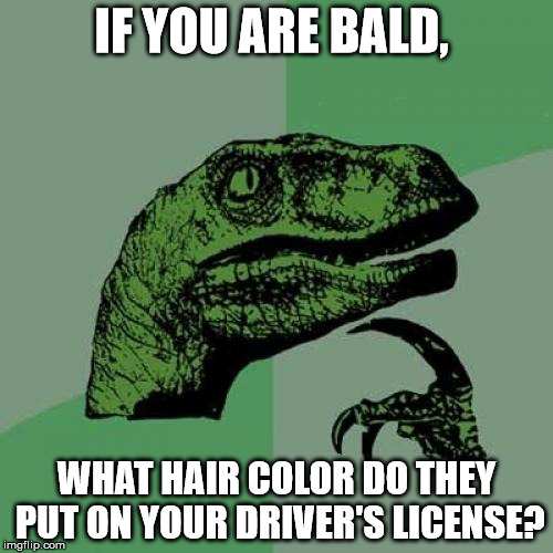 What Hair Color Do You Pick? | IF YOU ARE BALD, WHAT HAIR COLOR DO THEY PUT ON YOUR DRIVER'S LICENSE? | image tagged in memes,philosoraptor,bald,drivers license,bald is beautiful,what if i wore a wig | made w/ Imgflip meme maker
