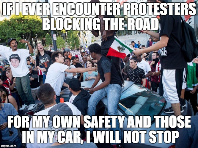 Lib protestors | IF I EVER ENCOUNTER PROTESTERS BLOCKING THE ROAD FOR MY OWN SAFETY AND THOSE IN MY CAR, I WILL NOT STOP | image tagged in lib protestors | made w/ Imgflip meme maker