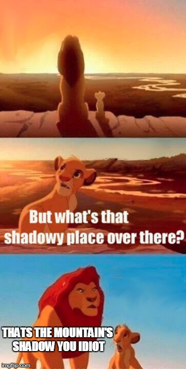 Simba Shadowy Place |  THATS THE MOUNTAIN'S SHADOW YOU IDIOT | image tagged in memes,simba shadowy place | made w/ Imgflip meme maker
