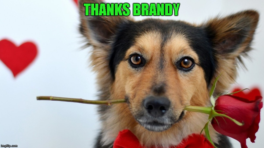 THANKS BRANDY | made w/ Imgflip meme maker