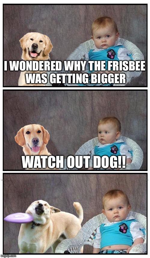 1b7yo7 dad joke frisbee dog memes imgflip