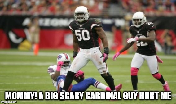 STAY DOWN! |  MOMMY! A BIG SCARY CARDINAL GUY HURT ME | image tagged in cardinals | made w/ Imgflip meme maker