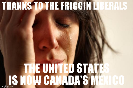 First World Problems Meme | THANKS TO THE FRIGGIN LIBERALS THE UNITED STATES IS NOW CANADA'S MEXICO | image tagged in memes,first world problems | made w/ Imgflip meme maker