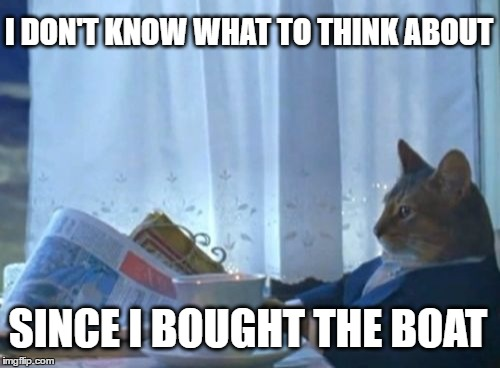 I Just Bought A Boat Cat | I DON'T KNOW WHAT TO THINK ABOUT SINCE I BOUGHT THE BOAT | image tagged in memes,i should buy a boat cat | made w/ Imgflip meme maker
