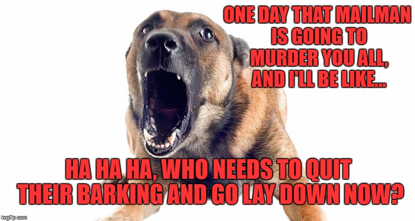 Go Lay Down My Ass |  ONE DAY THAT MAILMAN IS GOING TO MURDER YOU ALL, AND I'LL BE LIKE... HA HA HA, WHO NEEDS TO QUIT THEIR BARKING AND GO LAY DOWN NOW? | image tagged in watch dogs,dogs,guard dogs,mailman,lay down,i told you | made w/ Imgflip meme maker