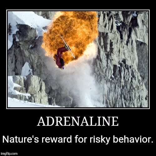 Nature's reward for risky behavior. | made w/ Imgflip meme maker