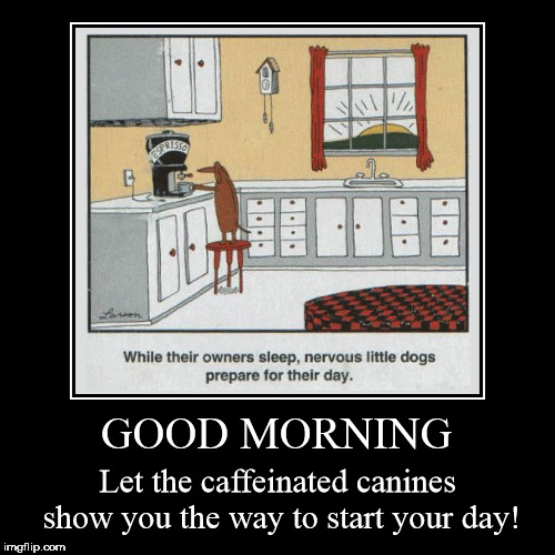 Good Morning, Dog Lovers | GOOD MORNING | Let the caffeinated canines show you the way to start your day! | image tagged in funny,demotivationals,dogs,coffee,caffeinated canines,gary larson | made w/ Imgflip demotivational maker