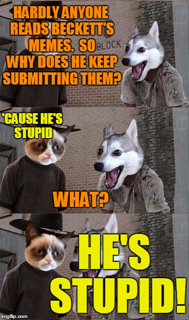Grumpy Cat and Bad Pun Dog | HARDLY ANYONE READS BECKETT'S MEMES.  SO WHY DOES HE KEEP SUBMITTING THEM? HE'S STUPID! 'CAUSE HE'S STUPID WHAT? | image tagged in grumpy cat and bad pun dog | made w/ Imgflip meme maker