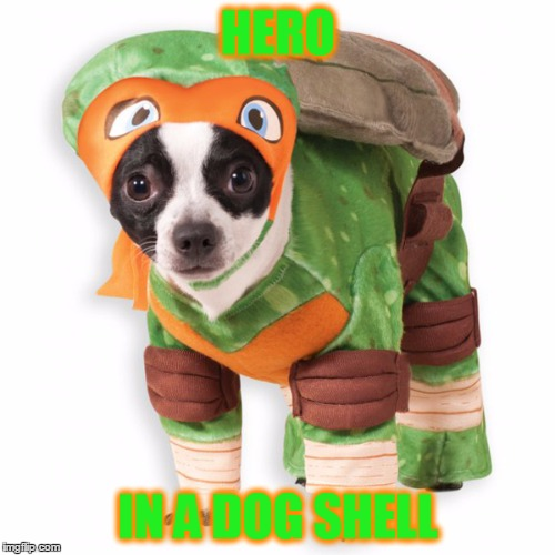 HERO IN A DOG SHELL | made w/ Imgflip meme maker