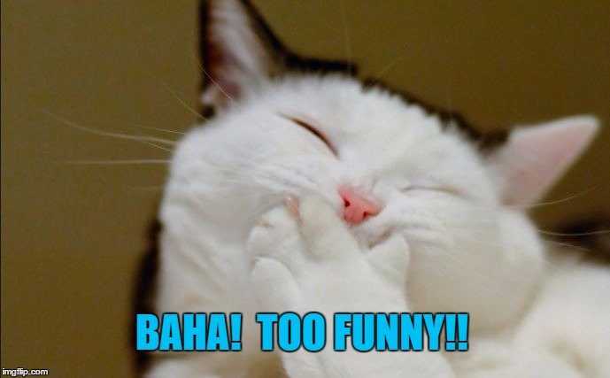 BAHA!  TOO FUNNY!! | made w/ Imgflip meme maker