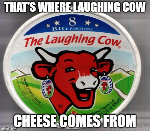 THAT'S WHERE LAUGHING COW CHEESE COMES FROM | made w/ Imgflip meme maker