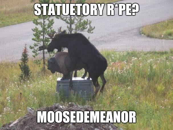 Saw this on FB | STATUETORY R*PE? MOOSEDEMEANOR | image tagged in memes,moose,buffalo | made w/ Imgflip meme maker