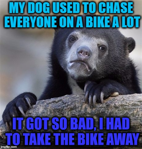 Confession Bear Meme | MY DOG USED TO CHASE EVERYONE ON A BIKE A LOT IT GOT SO BAD, I HAD TO TAKE THE BIKE AWAY | image tagged in memes,confession bear | made w/ Imgflip meme maker