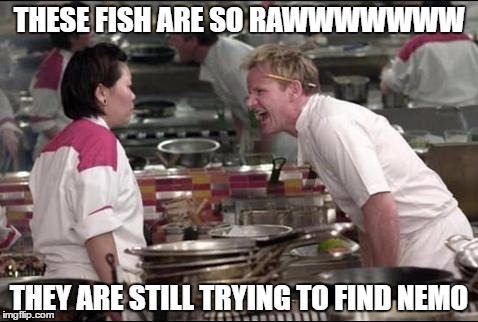 Angry Chef Gordon Ramsay | THESE FISH ARE SO RAWWWWWWW THEY ARE STILL TRYING TO FIND NEMO | image tagged in memes,angry chef gordon ramsay,fish,raw,finding nemo,nemo | made w/ Imgflip meme maker