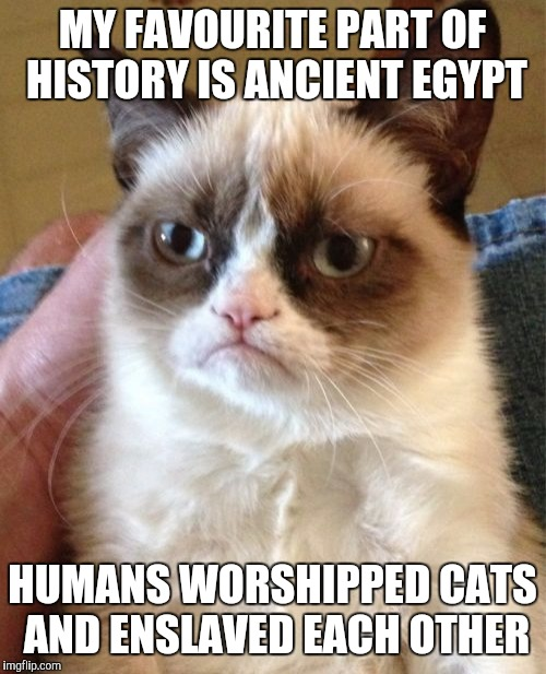Grumpy Cat Meme | MY FAVOURITE PART OF HISTORY IS ANCIENT EGYPT HUMANS WORSHIPPED CATS AND ENSLAVED EACH OTHER | image tagged in memes,grumpy cat | made w/ Imgflip meme maker