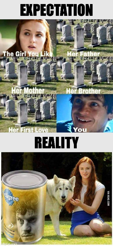 Expectations vs Reality |  EXPECTATION; REALITY | image tagged in game of thrones,ramsay bolton,sansa stark | made w/ Imgflip meme maker
