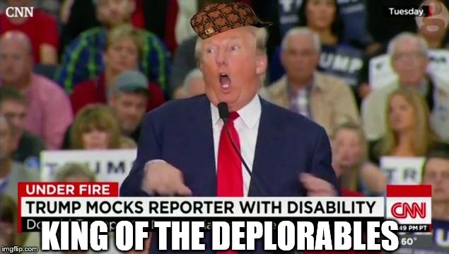 Trump Mocking Disabled | KING OF THE DEPLORABLES | image tagged in trump mocking disabled,scumbag,trump,deplorable | made w/ Imgflip meme maker