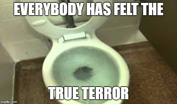 EVERYBODY HAS FELT THE TRUE TERROR | image tagged in toilet,overflow,terror,horror,seat,bowl | made w/ Imgflip meme maker