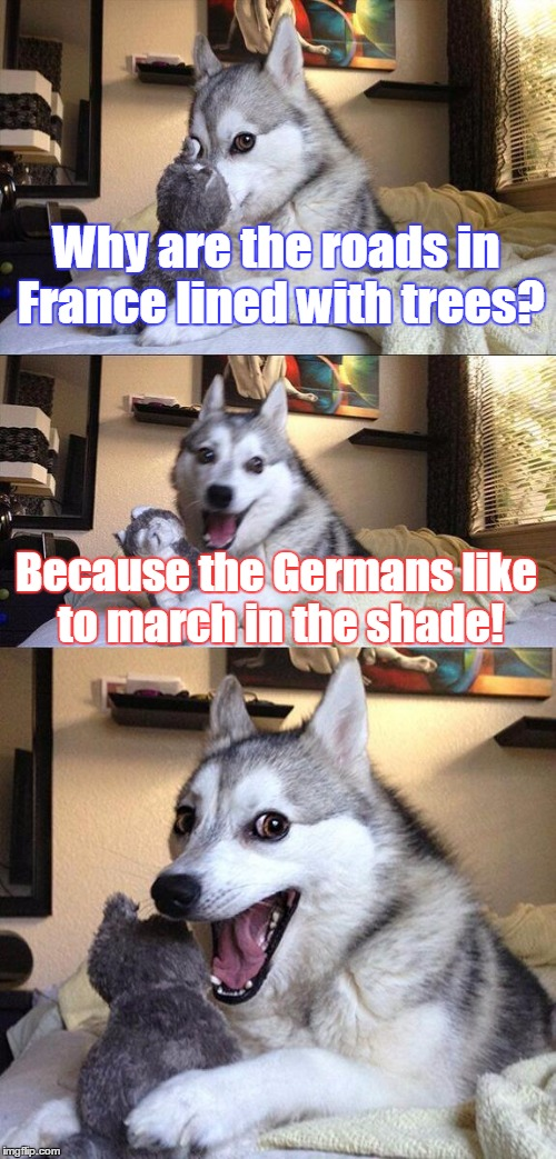 Bad Pun Dog Meme | Why are the roads in France lined with trees? Because the Germans like to march in the shade! | image tagged in memes,bad pun dog | made w/ Imgflip meme maker