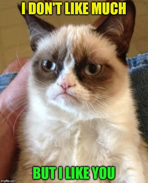Grumpy Cat Meme | I DON'T LIKE MUCH BUT I LIKE YOU | image tagged in memes,grumpy cat | made w/ Imgflip meme maker