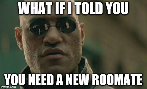 Matrix Morpheus Meme | WHAT IF I TOLD YOU YOU NEED A NEW ROOMATE | image tagged in memes,matrix morpheus | made w/ Imgflip meme maker
