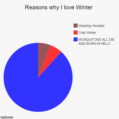 Reasons why I love Winter | MOSQUITOES ALL DIE AND BURN IN HELL!, Cold Winter, Wearing Hoodies | image tagged in funny,pie charts | made w/ Imgflip pie chart maker