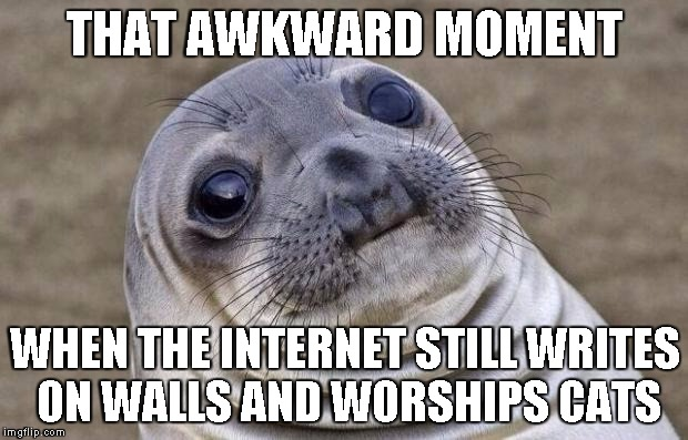 Awkward Moment Sealion Meme | THAT AWKWARD MOMENT WHEN THE INTERNET STILL WRITES ON WALLS AND WORSHIPS CATS | image tagged in memes,awkward moment sealion | made w/ Imgflip meme maker