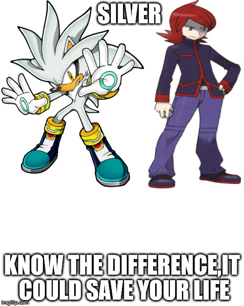 SILVER KNOW THE DIFFERENCE,IT COULD SAVE YOUR LIFE | image tagged in pokemon,sonic the hedgehog | made w/ Imgflip meme maker