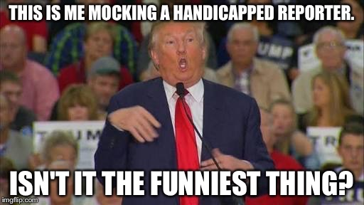 Trump |  THIS IS ME MOCKING A HANDICAPPED REPORTER. ISN'T IT THE FUNNIEST THING? | image tagged in hands | made w/ Imgflip meme maker