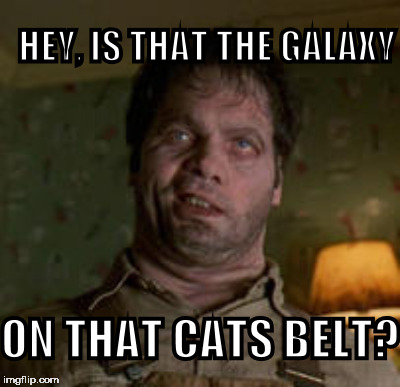 HEY, IS THAT THE GALAXY ON THAT CATS BELT? | made w/ Imgflip meme maker