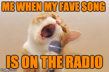 Funny cat |  ME WHEN MY FAVE SONG; IS ON THE RADIO | image tagged in funny cat | made w/ Imgflip meme maker