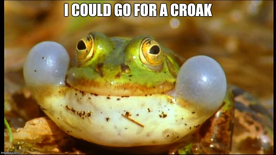 I COULD GO FOR A CROAK | made w/ Imgflip meme maker