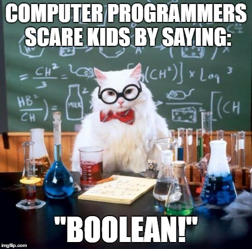 "Chemistry Cat | COMPUTER PROGRAMMERS SCARE KIDS BY SAYING: ""BOOLEAN!"" 