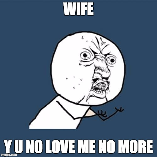 Y U No Meme | WIFE Y U NO LOVE ME NO MORE | image tagged in memes,y u no | made w/ Imgflip meme maker