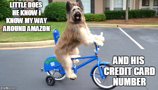 LITTLE DOES HE KNOW I KNOW MY WAY AROUND AMAZON AND HIS CREDIT CARD NUMBER | made w/ Imgflip meme maker